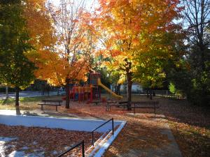 [Park Play Structure in the Autumn]