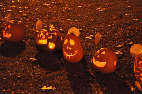 Part of the Pumpkin Walk at the Champlain Park 2014 Halloween Event.  Pumpkin Walk and Food Bank donations were organized by Kevin O'Shaughnessy.  Photo was taken by John Arnason.