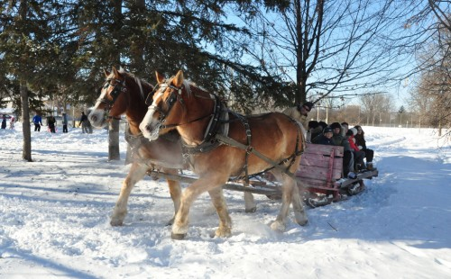 Sleigh Ride provided by Chris Kelly and Sponsored by Community Association.