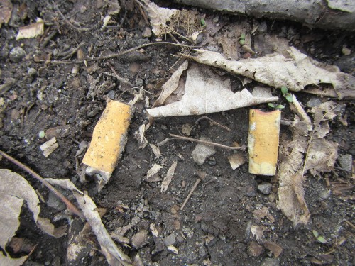 20150425_101748_AS_3004 Cigarette butt detail