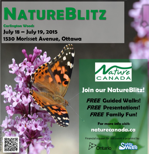 Finalposter-July2015NatureBlitz.jpeg