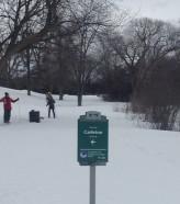 2016-02-28 xski trail parkway 2