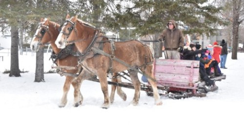 Turning a corner.  Sleigh and horses provided by Chris and Sharon Kelly, sponsored by the Champlain Park Community Association.