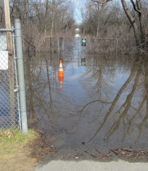 [Looking north up Daniel Avenue through the flooded forest]
