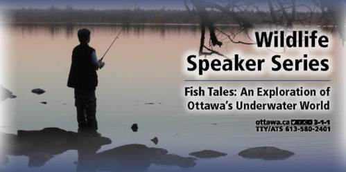 [Fish Tales Poster]