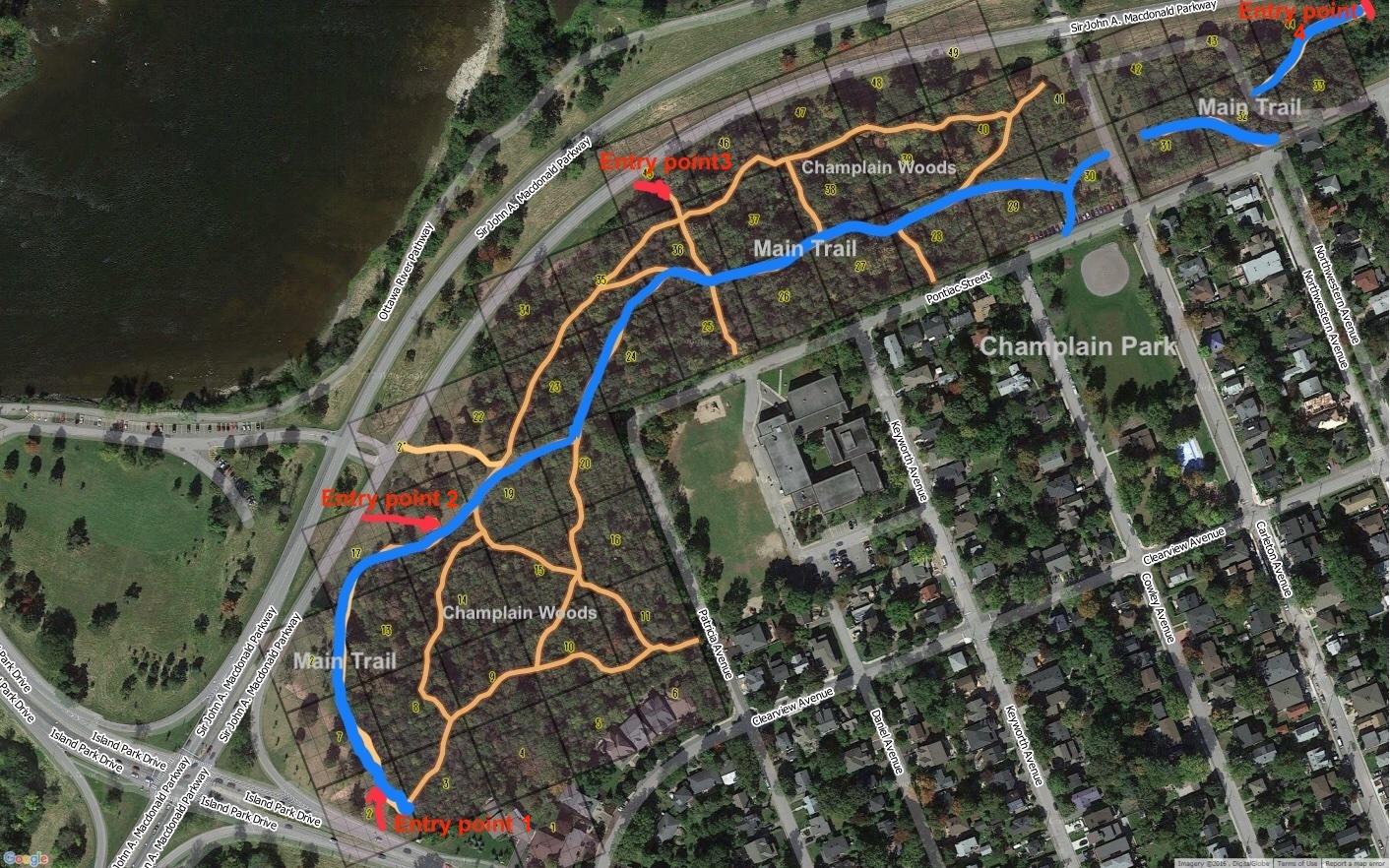 2021 Champlain Wood - Main Trails - Wood chips