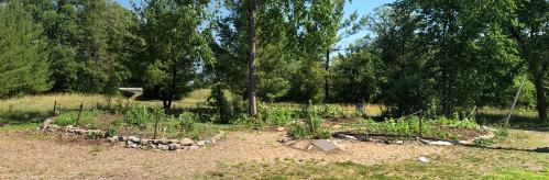 [Pollinator Garden June 24, 2021 - Should be more spectacular by now (August)!  Maybe somebody could get a photo of that...]