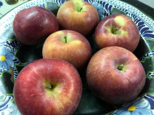 [A bowl full of apples]